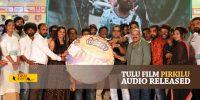 Tulu film 'Pirkilu' audio release held.